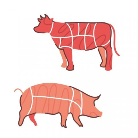 Carn i embotits