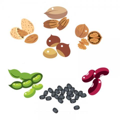 Llegums i fruits secs