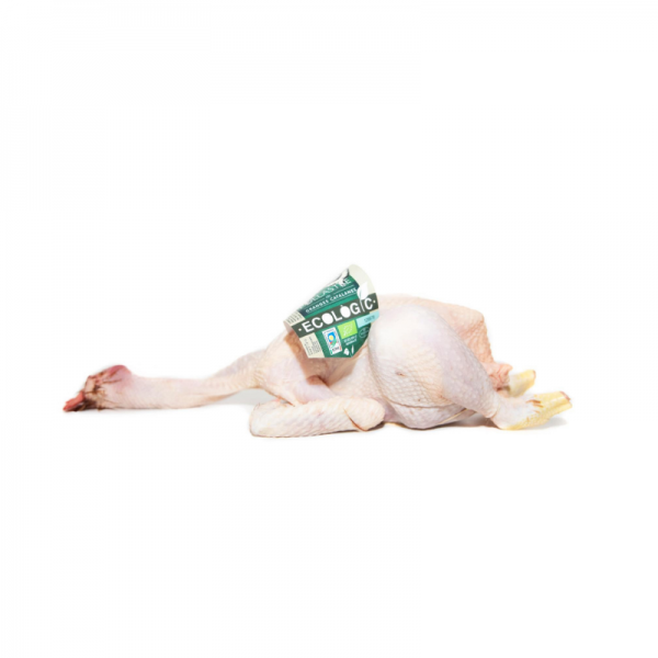 pollastre ecològic